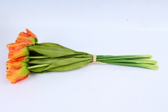 Тюльпаны букет  (10 шт в уп) оранжевые ART007