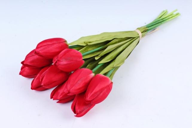 Тюльпаны букет  (10 шт в уп)  алые ART002