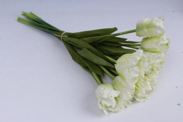 тюльпаны букет 45 см (10 шт в уп) белые art007