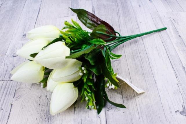Тюльпаны с росянкой белые