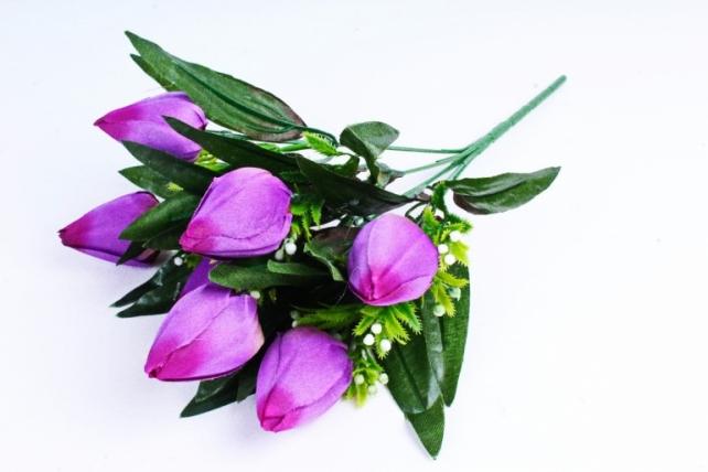 Тюльпаны с росянкой фиолетовые