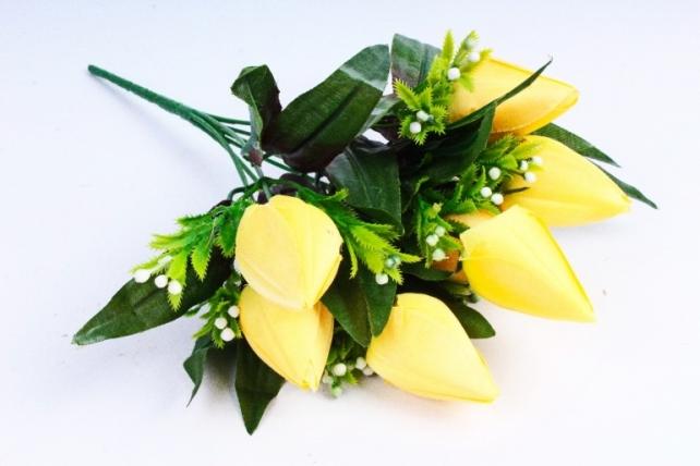 Тюльпаны с росянкой желтые