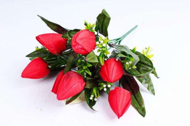 Тюльпаны с росянкой красные