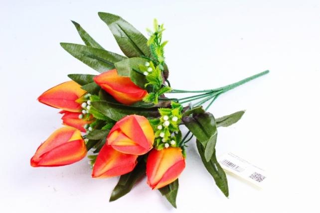 Тюльпаны с росянкой оранжевые
