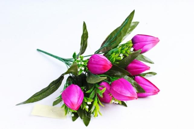 Тюльпаны с росянкой пурпурные