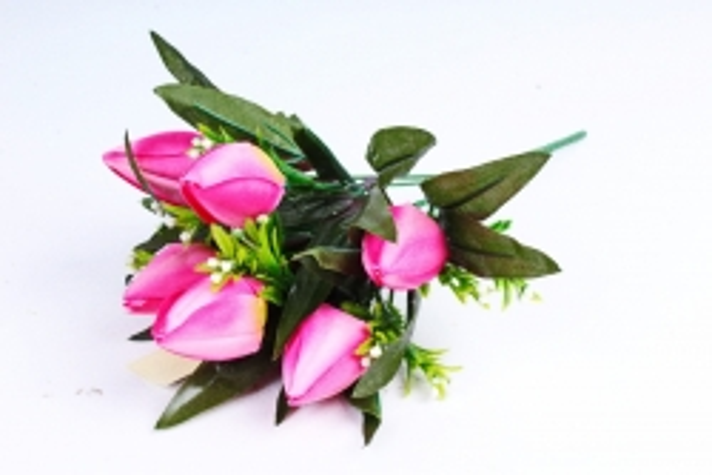 Тюльпаны с росянкой ярко-розовые