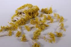 тычинки фоам жёлтые 2 мм (3800 шт)