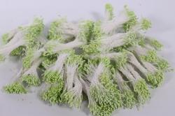 тычинки фоам салатовые 2 мм (3800 шт)