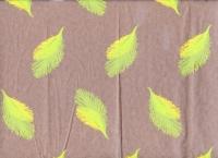 Упаковка для цветов,- Цветочная плёнка - Рулон 0,7 Перья (240гр) салатовый-желтый