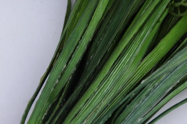 ветка декоративная салатовая h=33cm