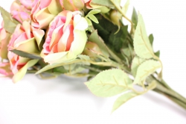Ветка розы 35 см, розово-салатовая (12шт в уп) SUN452