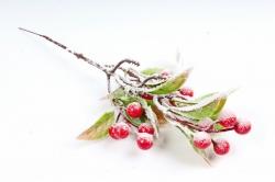Ветка с ягодами заснеженная,  KFS6-361   4817 (А)