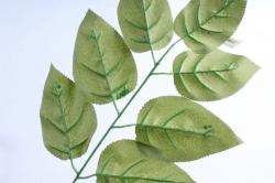 Веточка с листиками  Темно-зеленая однотонная S278 (1шт)