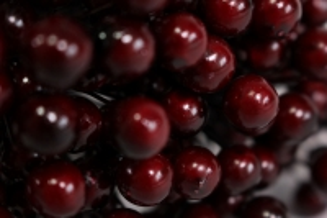 веточка-шарик с ягодками 1см - бордовая gay299 2228