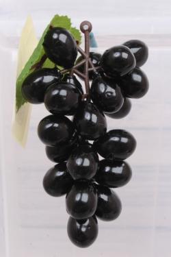 Виноград Изабелла черный. 11 см