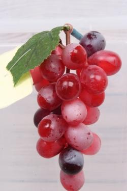 Виноград Изабелла красный 1.2. 11см.
