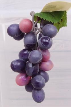 Виноград Изабелла синий 1.3. 11см.