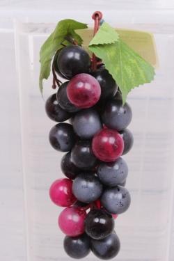 Виноград Мускат бургундия №73. 17 см.