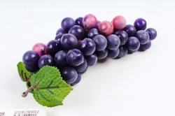 Виноград Мускат фиолетовый
