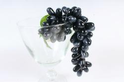 Виноград   чёрный