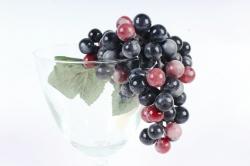 Виноград  Изабелла крупная 25 см
