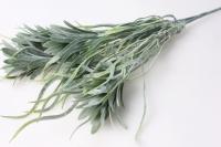 Водоросли салатовые - искусственные растения