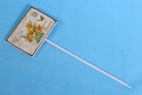 Вставка 30см табличка - Нарцисы (1шт)