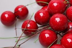 ягодки красные 2,5см на проволоке (50шт в упаковке) 2010