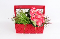 Ящик (ГО) с ручкой №13 красный  в квадратик