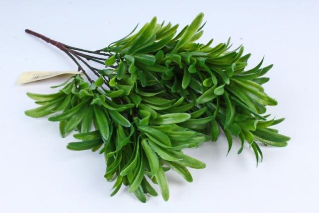 Зелень Лаванды зелёная  AVA202-2