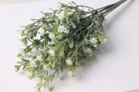 Звездчатка белая GAР56 - растения для декора