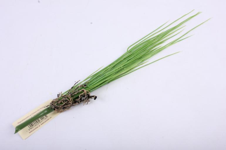 трава зелёная 30 см gap300